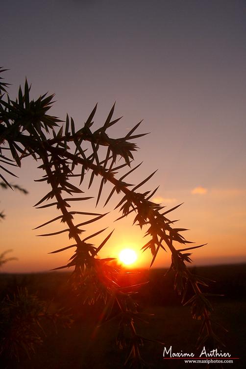 Coucher de soleil près de Montrozier