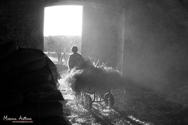 Vie de la ferme près de Montrozier